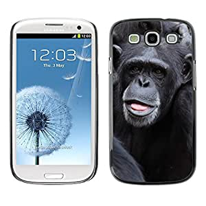 Hot Style Cell Phone PC Hard Case Cover // M00108339 Animal Ape Chimp Chimpanzee Cute // Samsung Galaxy S3 S III SIII i9300