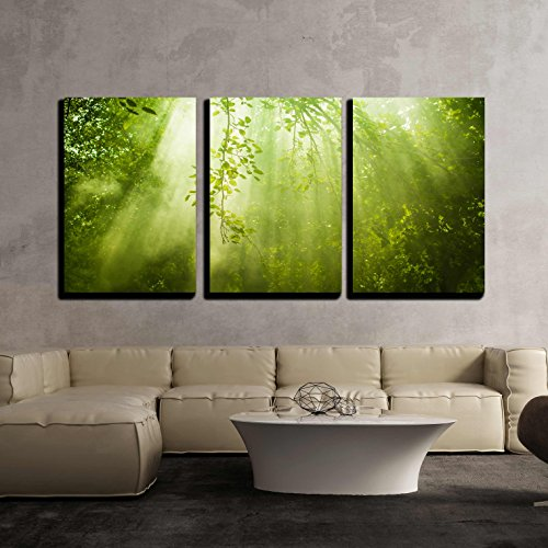 Rays of Sunlight and Green Forest x3 Panels