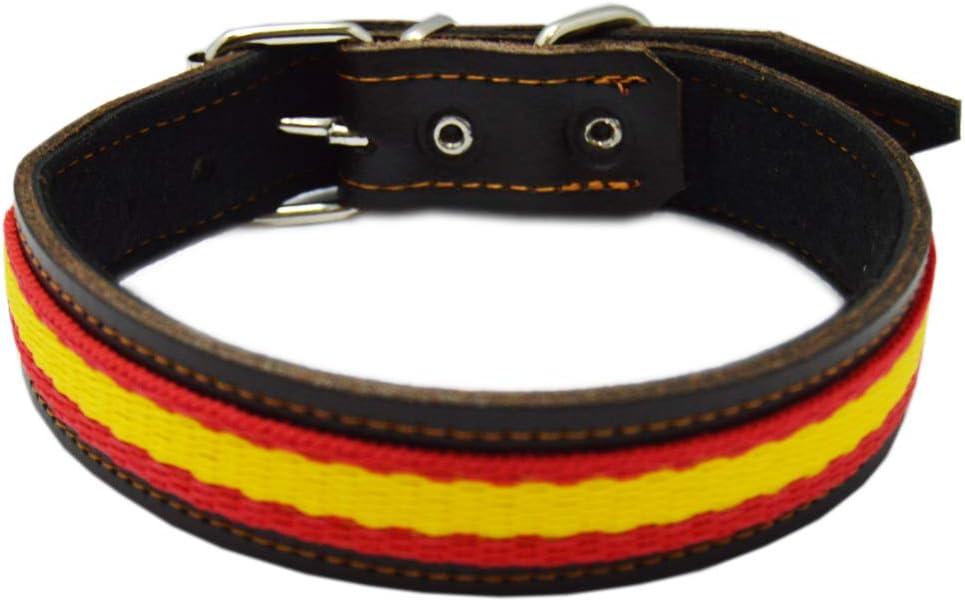 ALBERO Collar para Perro Piel Flor con Bandera de España. 2,5 x 47 cms, Marrón: Amazon.es: Productos para mascotas