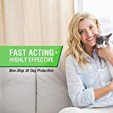 Frontline-Plus-Flea-and-Tick-Control-for-Cats-and-Kittens-8-weeks-and-Older-3-MO-SUPPLY