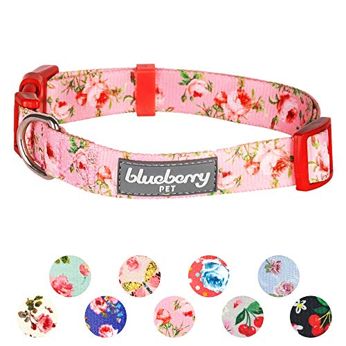 Blueberry Pet 8 Patterns Spring Scent Inspired Floral Rose Baby Pink Dog Collar, Small, Neck 12
