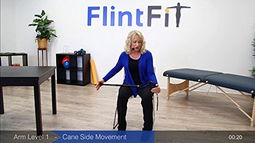 FlintFit Stroke Recovery Exercises: Therapy Videos for Hands, Arms, Core, and Legs by FlintFit (Image #4)
