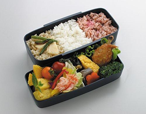 skater japanese modern traditional compartmental 2 tier bento lunch box 900ml chopsticks. Black Bedroom Furniture Sets. Home Design Ideas