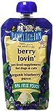 Nummy Tum Tum Organic Berry Loving Pet Food, 4 Ounce
