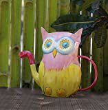 Iron Watering Can Gardening & Lawn Care Watering Equipment Outdoor & Indoor Patio Watering Cans (Owl)