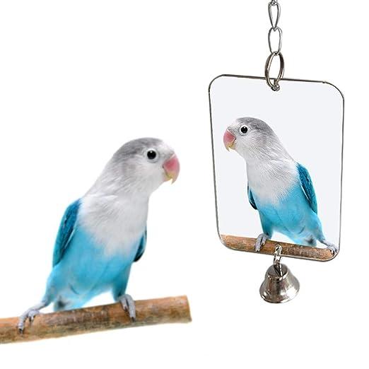 Anjing Mall Jaula Colgante para Loros de pájaro, con Espejo y ...