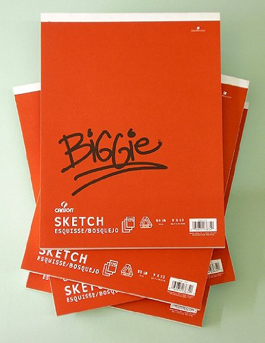 Canson Biggie Jumbo Sketch Pads Size 18 X 24 inch with 125 (Biggie Pads)