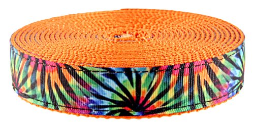Country Brook Design 1 Inch Tie Dye Stripes Ribbon on Orange Webbing, 5 Yards