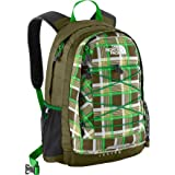 The North Face Jester Backpack (Triumph Green Plaid)