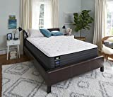 Sealy Response Performance 12-Inch Plush Tight Top Mattress, Full