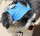 DOG OUTDOOR PET HAT BLUE ♦ ADJUSTABLE ♦ LOVEWALLY AUTHENTIC USA SELLER ALL SIZES (Large)