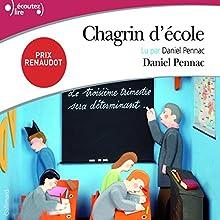 Chagrin d'école | Livre audio Auteur(s) : Daniel Pennac Narrateur(s) : Daniel Pennac