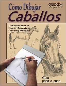 Como Dibujar Caballos / Animales Domesticos: Volume 14 (Coleccion Borges Soto)