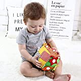 Buckle Toys for Toddler 2 Years Old, Learning resources Activity Dress Cube Early Eduction Basic Life Skills Learning - Zip, Snap, Button, Buckle, Velcro & Tie Teaching Toys for Baby Boys and Girls