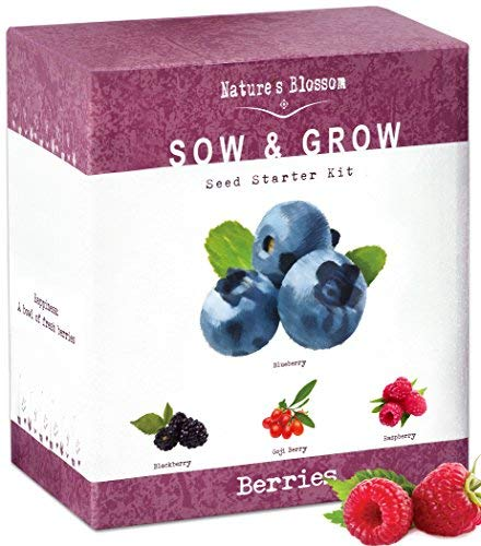 Choice Organic Soil Garden (Nature's Blossom Fruit Growing Kit. The Beginner's Set to Grow 4 Types of Berries from Seed - Raspberries ; Blueberries ; Goji Berry ; Blackberries. Contains Planting Pots, Soil & Gardening Guide)