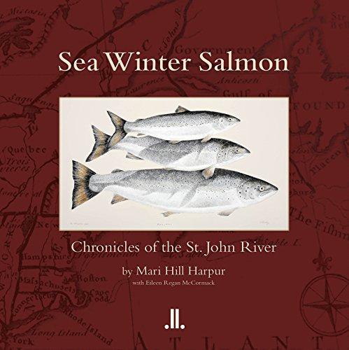 Sea Winter Salmon: Chronicles of the St. John River