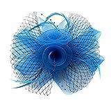 Ahugehome Women Fascinator Hair Clip Headband Feather Flower Veil Mesh Cocktail Tea Party G Light Blue