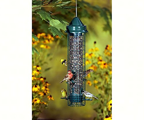 (GC - Brome Bird Care - Squirrel Buster Feeder - Classic)