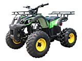 TAO TaoTao Atv TForce 110cc Youth size  Utility ATV with REVERSE and Big Rugged Wheels