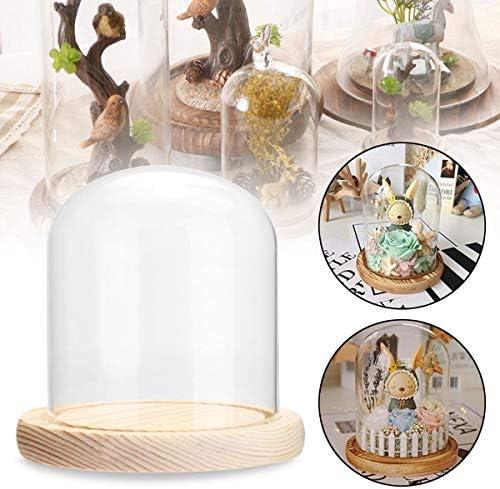 Queenwind クリアガラスドーム木製ベースクロッシュベルジャーディスプレイスタンドマイクロランドスケープ DIY 花瓶部屋の装飾