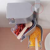 Transparent Spice Storage Containers|Square Spice box| Revolving Spice Tower|Seasoning Storage Organization|Wall-mounted paste design, stainless steel shaft. (Gray two layers)
