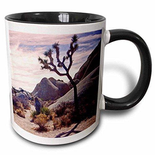 3dRose 154788_4 Boulder land scape and a backlit Joshua tree Mug, 11 oz, Black 4 Christmas Tree Mugs
