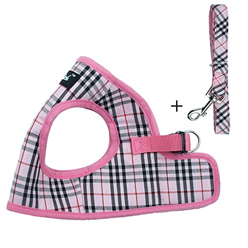 (PUPTECK Soft Mesh Small Dog Harness with Leash Basic Plaid Padded Vest for Puppy)