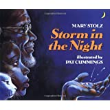 Storm in the Night