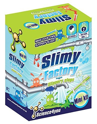 - Science4You Mini Kit Slimy Factory - 2 Experiments to Make Your Own Slippery Slugs