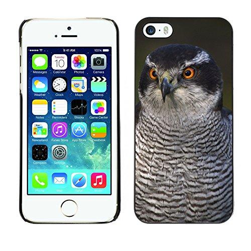 Premio Sottile Slim Cassa Custodia Case Cover Shell // F00004705 oiseau intelligent // Apple iPhone 5 5S 5G