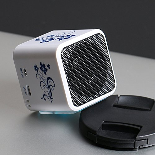 NIZHI Portable mini Speaker with FM Radio, Small Speakers with LCD, Alarm Clock , Micro tf Card, HD 5W, 6 Hours Playtime, Usb mp3 music player for Apple iPhone, iPad, Samsung GALAXY Series