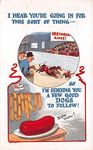 Race Greyhound - Greyhound Races, Bow Wow Old Vintage Dog Racing Postcard Post Card