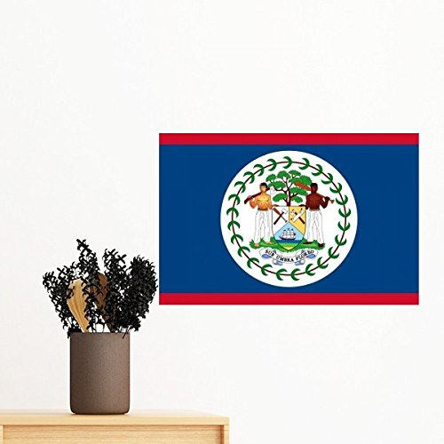 Belize National Flag North America Country Symbol Mark Pattern Removable Wall Sticker Art Decals Mural DIY Wallpaper for Room Decal