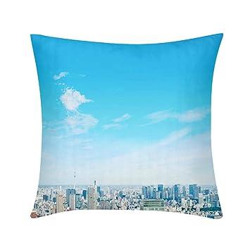 Amazon.com: Almohada de lujo, diseño de arte personalizado ...