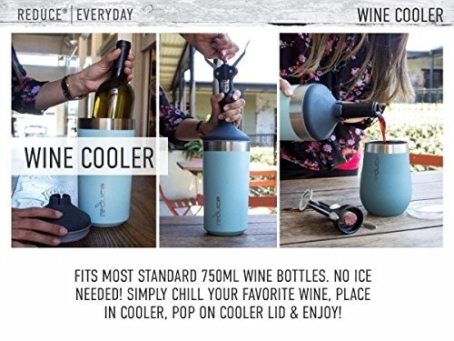 Portable Wine Bottle Cooler by REDUCE - Stainless Steel, Insulated Chiller to Keep Wine at the Perfect Temperature, No Ice Required - Ideal for Outdoor Summer Parties, Fits Most Wine Bottles - Mint by REDUCE (Image #3)