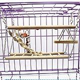 FidgetGear Pet Bird Parrot Wooden Bridge Step Stairs Climbing Swing Ladder Hammock Cage Toy