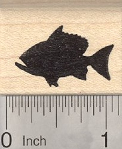 Red Snapper Rubber Stamp, Fish in Silhouette