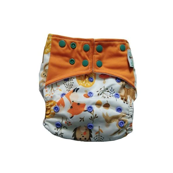 Allboutbaby Reusable pocket Cloth Diaper with stay dry insert- Woodland