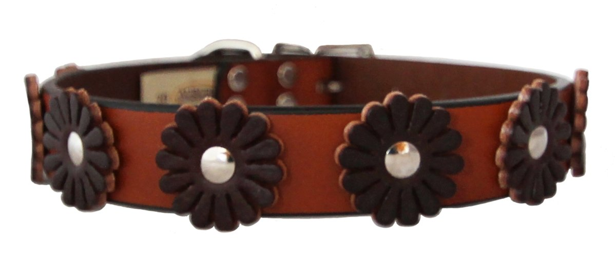 TAN 5 8\ TAN 5 8\ Auburn Leathercraft Flower Collar TAN 5 8  x 12