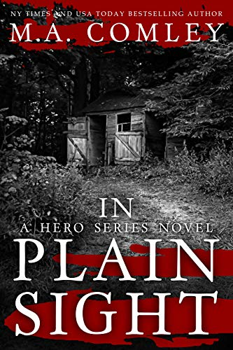 In Plain Sight (Hero Series Book 3)