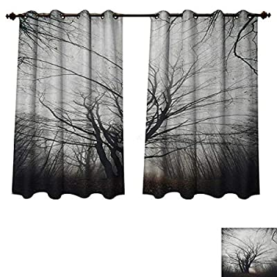 Anzhouqux Nature Bedroom Thermal Blackout Curtains Vertical Photo of Autumn Tree in Dark Haunted Foggy Mist Mysterious Forest Picture Print Blackout Draperies for Bedroom Grey