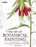 Margaret Stevens Artist Uk Botanical Painting