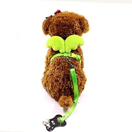 Vi.yo Lindo Angel Pet Dog lleva collar y collares para pequeño diseñador de mascotas ala ajustable size XS (Verde)