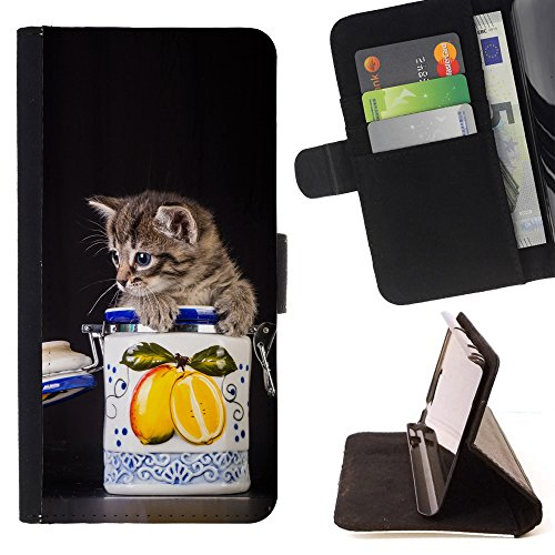 STPlus Gato en una caja Animal Monedero Carcasa Funda para Apple iPhone SE / 5 / 5S #22