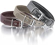 Knuffelwuff 13991 – 006 Suave Piel Collar Perro Perros Collar Glen Dale 38 – 45 cm, Color Negro
