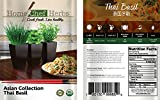 Home Chef Herbs USDA Organic Asian Herb Seeds for
