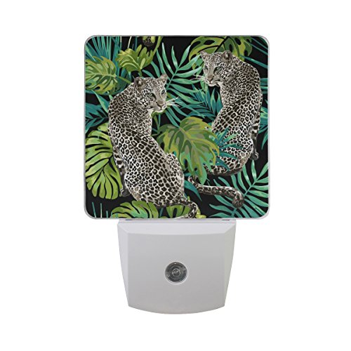 Naanle Set of 2 Leopard Animal with Green Tropical Jungle Monstera Palm Leaf On Black Auto Sensor LED Dusk to Dawn Night Light Plug in Indoor for ()