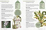 The Kew Gardener's Guide to Growing Orchids: The