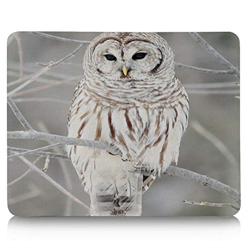 - Customized Mouse Pad for Office and Home, Rectangle Rubber Base Cloth Gaming Mouse Mat for Desktops, Computer, PC and Laptops, White Owl Perch On Tree