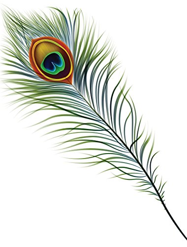 JP London PMUR2226 uStrip Peel and Stick Removable Wall Decal Sticker Mural, Simple Peacock Feather, 4 x 3-Feet